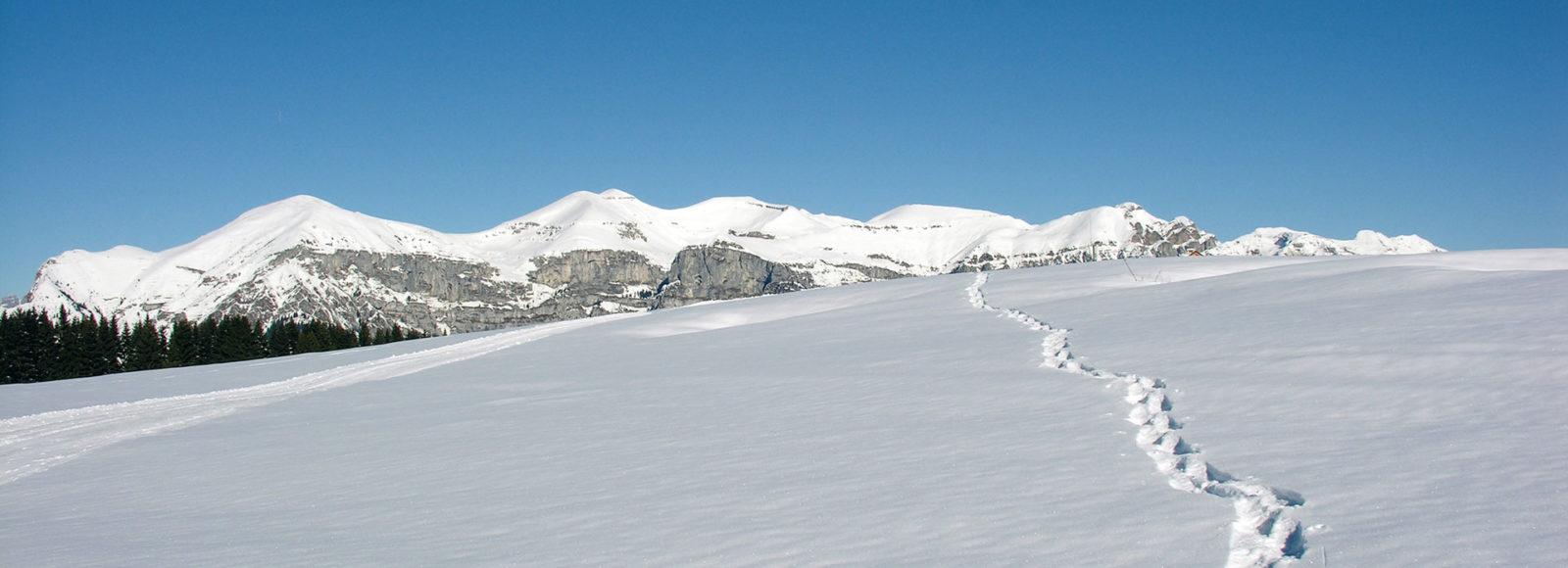 monte-avena-escursioni