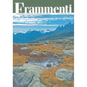 frammenti-small